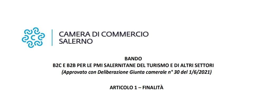 B2C E B2B PER LE PMI SALERNITANE DEL TURISMO E DI ALTRI SETTORI. (Approvato con Deliberazione Giunta camerale n° 30 del 1/6/2021